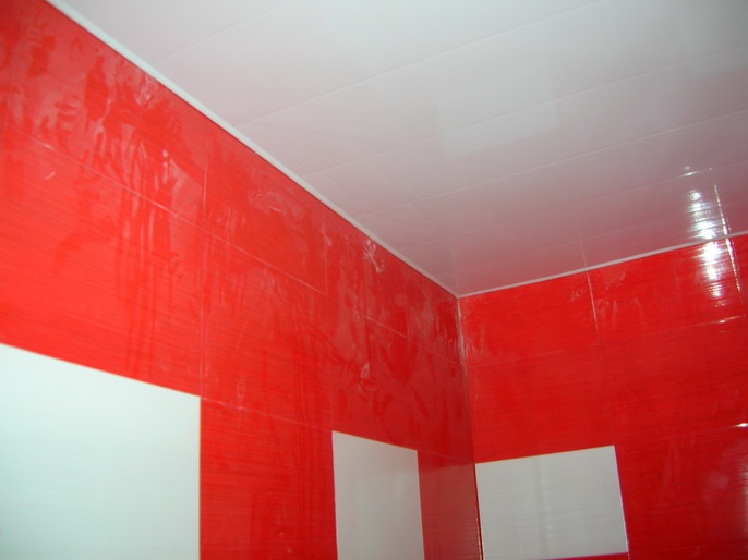 Пластиковые панели: ремонт в ванной | Arnold-Prize ...: http://arnold-prize.ru/stroitelstvo/plastikovye-paneli-remont-v-vannoj
